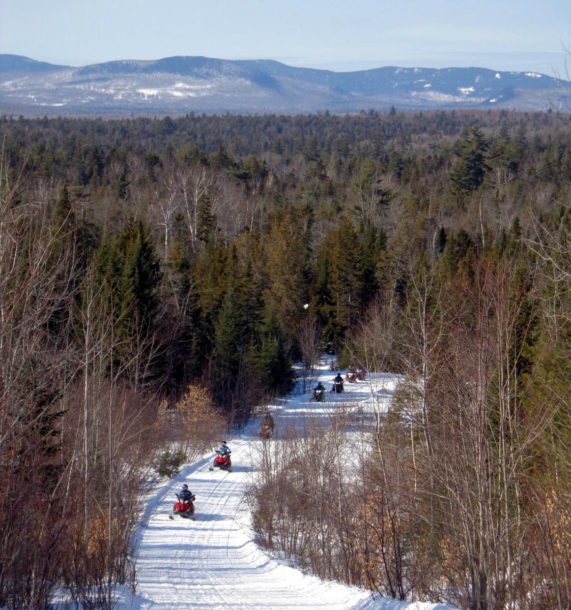 Wildwoods Trail